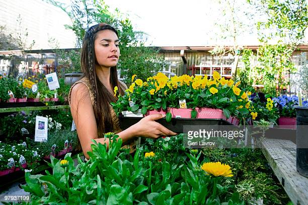 woman shopping at a plant nursery - 植物園 ストックフォトと画像