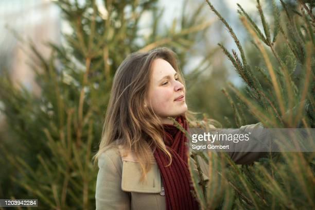 woman shopping for christmas tree, christmas market, freiburg, deutschland - sigrid gombert stockfoto's en -beelden
