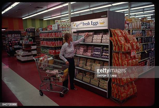 Woman Shopping For Eggs in Supermarket