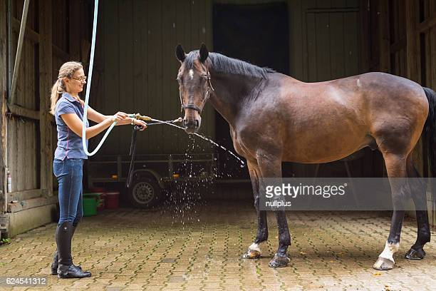 Woman showering her horse