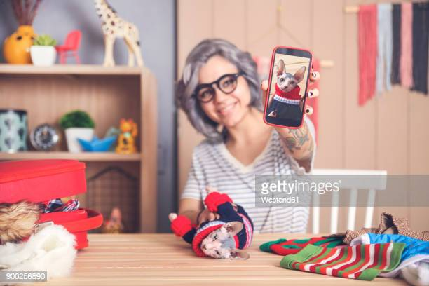 woman showing cell phone picture of sphynx cat wearing pullover - puss pics stock photos and pictures