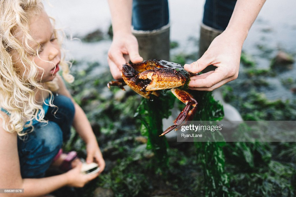 Woman Showing Girl a Crab : Stock Photo