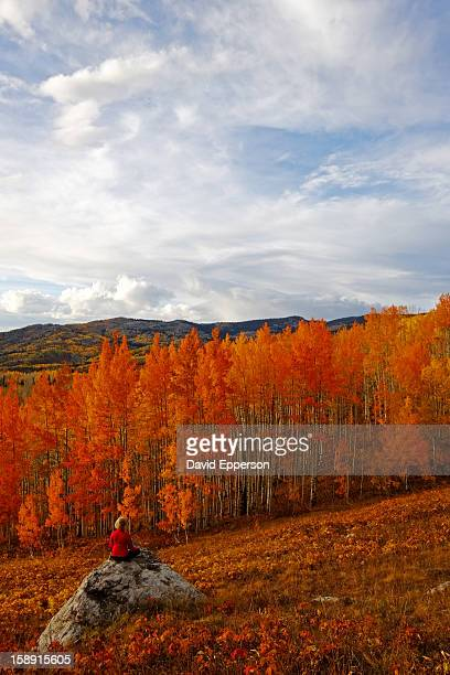 Woman siting on rock in fall colors