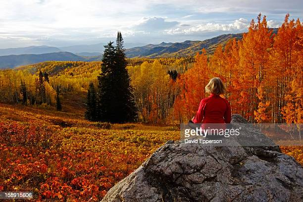 woman siting on rock in fall colors - steamboat springs colorado stock photos and pictures