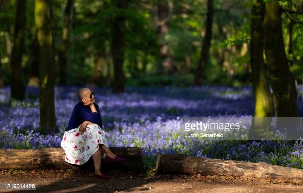 Woman sits amongst bluebells in the woods at Wanstead on April 15, 2020 in London, England. The Coronavirus pandemic has spread to many countries...