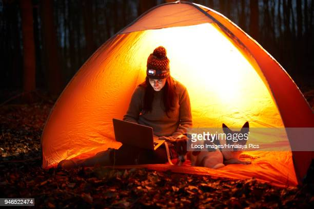 A woman sits in a tent at night with her dogs and looks at her laptop