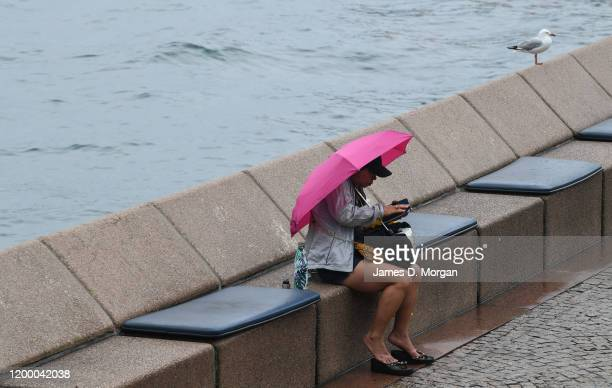 A woman sits underneath her umbrella beside the harbour as a seagull watches her on January 17 2020 in Sydney Australia A severe thunderstorm warning...