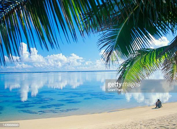 woman sitting beach. - rarotonga foto e immagini stock