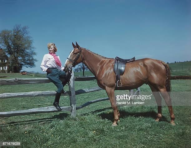 Woman Sitting Besides Horse In Farm