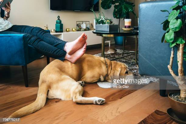 Woman sitting in armchair resting feet on dog