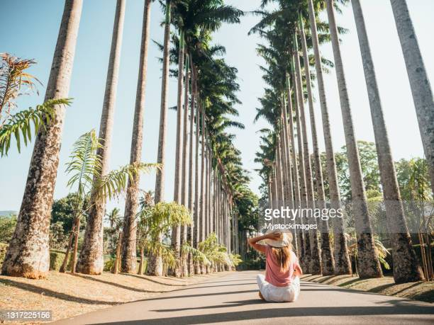 woman sitting in palm tree avenue contemplating nature - kandy kandy district sri lanka stock pictures, royalty-free photos & images