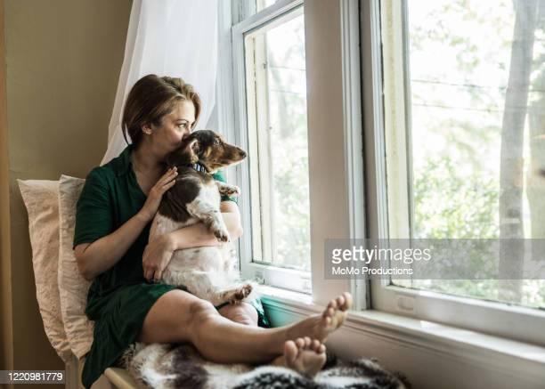 woman sitting in window with dog - lockdown stock-fotos und bilder