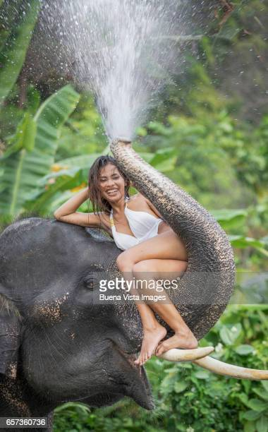 woman sitting on an elephant's splashing trunk - white elephant stock photos and pictures