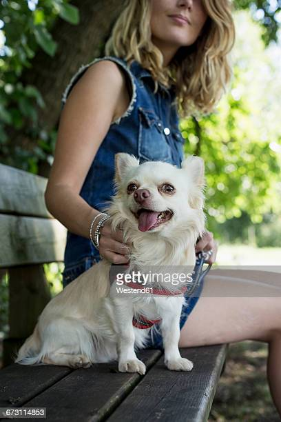 Woman sitting on bench with her Chihuahua