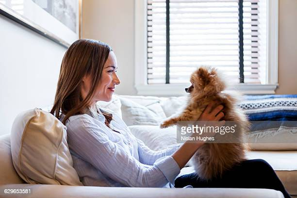 woman sitting on couch with her small pet dog - pomeranian stock photos and pictures