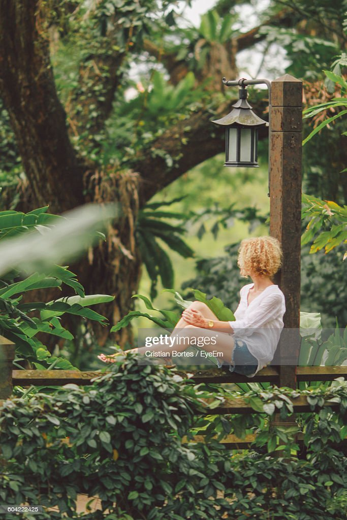 Woman Sitting On Fence Against Trees In Park : Stock Photo