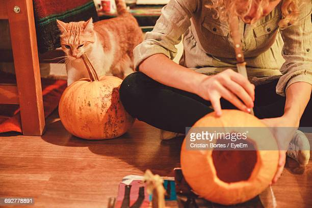 woman sitting on floor while carving pumpkin lantern with cat at home - bortes stock-fotos und bilder