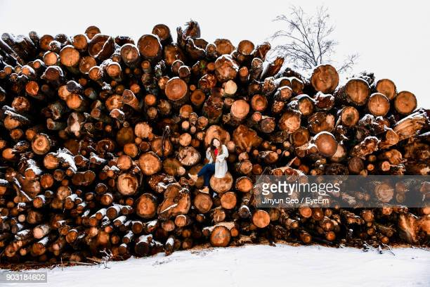 Woman Sitting On Logs During Winter