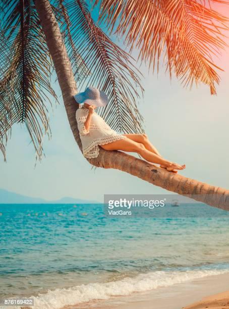Frau sitzt auf palm