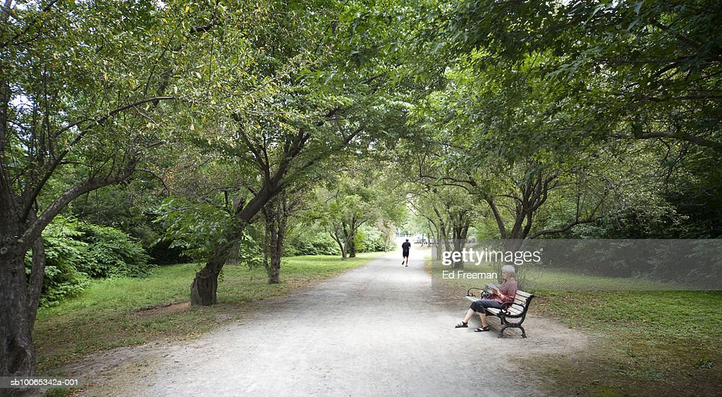Woman sitting on park bench, reading book : Foto stock