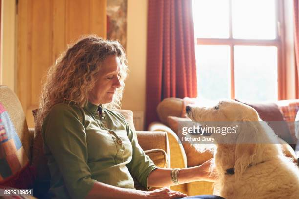 woman sitting on sofa stroking dog - only mature women stock pictures, royalty-free photos & images