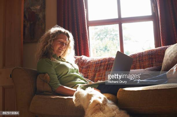 Woman sitting on sofa with laptop and stroking dog