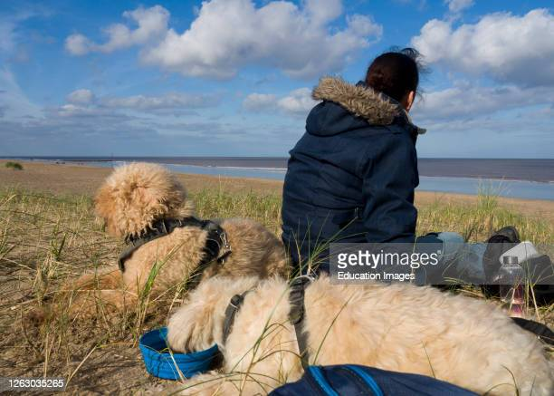 Woman sitting on the beach with two dogs in spring, Mablethorpe, Lincolnshire, UK.