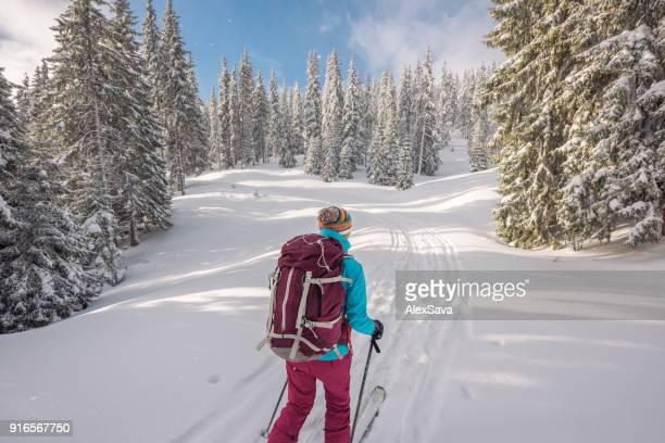 Woman ski touring thorugh coniferous in winter
