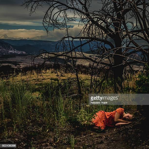 woman sleeping in the forest - wildnis stock-fotos und bilder