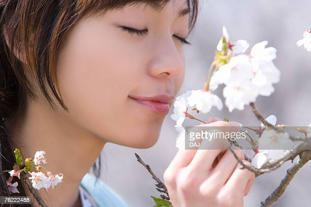 Woman smelling cherry flowers, closing eyes, side view, close up, Japan