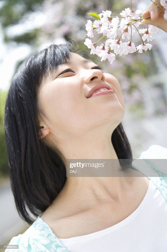 Woman smelling cherry flowers, smiling, front view, Japan : Photo