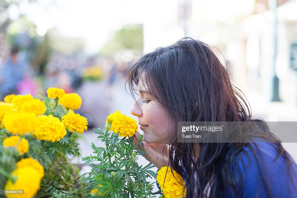 Woman smelling flower : Stock Photo