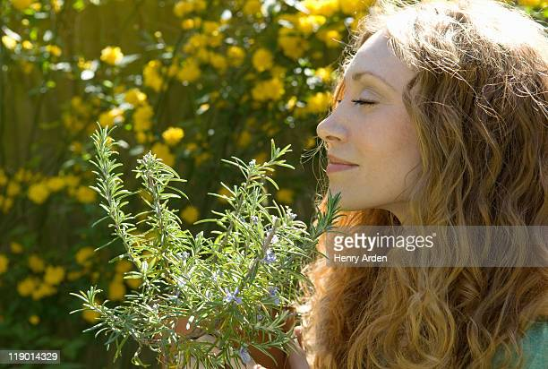 woman smelling herbs in backyard - herb stock pictures, royalty-free photos & images