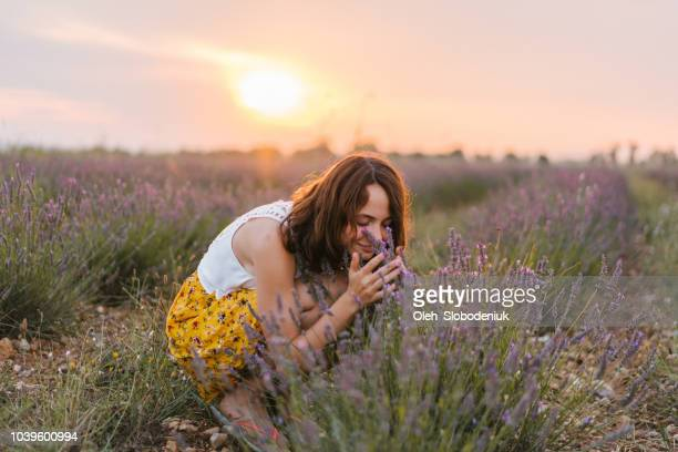 woman smelling lavender on the  field in provence - essence stock pictures, royalty-free photos & images
