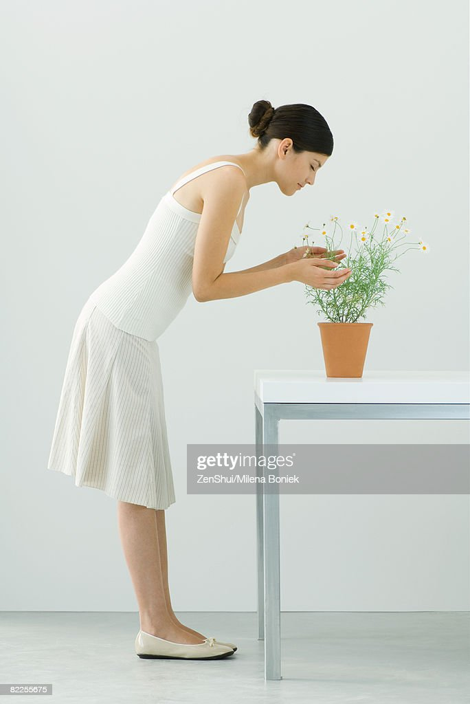 Woman smelling potted chamomile plant, eyes closed, side view : Stock Photo
