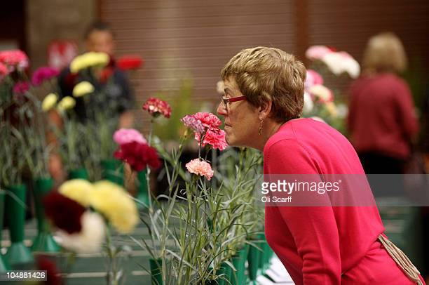 A woman smells the carnation flowers on display at the Royal Horticultural Society's London Autumn Harvest Show in Lawrence Hall on October 6 2010 in...
