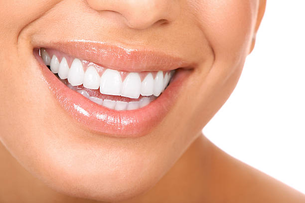 Free Human Teeth Images Pictures And Royalty Free Stock Photos