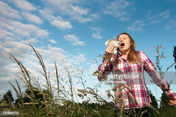 woman sneezing in tall grass - espirrando - fotografias e filmes do acervo