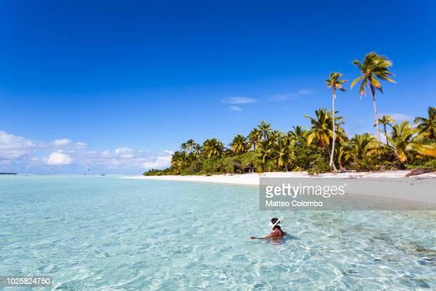woman snorkeling in aitutaki, cook islands - isole cook foto e immagini stock