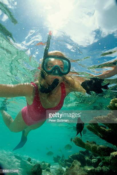 Woman Snorkeling Near Coral Reef