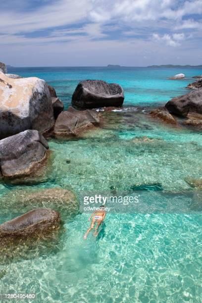 mujer buceando en arrecife poco profundo, virgen gorda - islas de virgin gorda fotografías e imágenes de stock