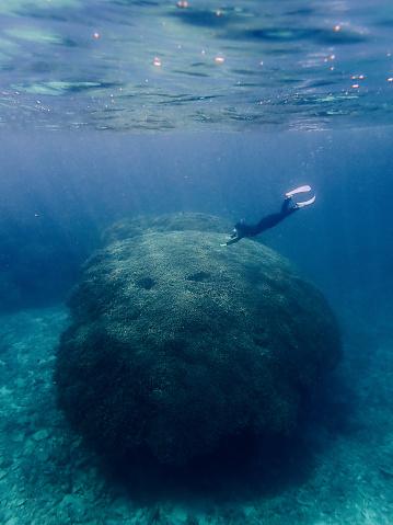 Woman snorkeling over massive coral, Sekisei Lagoon, Okinawa, Japan - gettyimageskorea