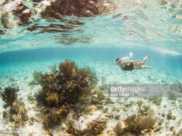 Woman snorkeling underwater, Grand Cayman, Cayman Islands