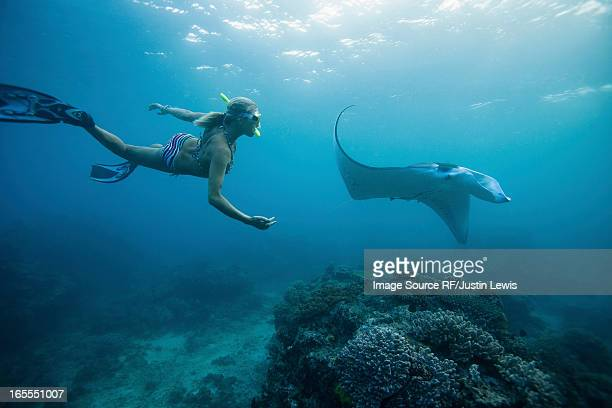Woman snorkeling with ray underwater