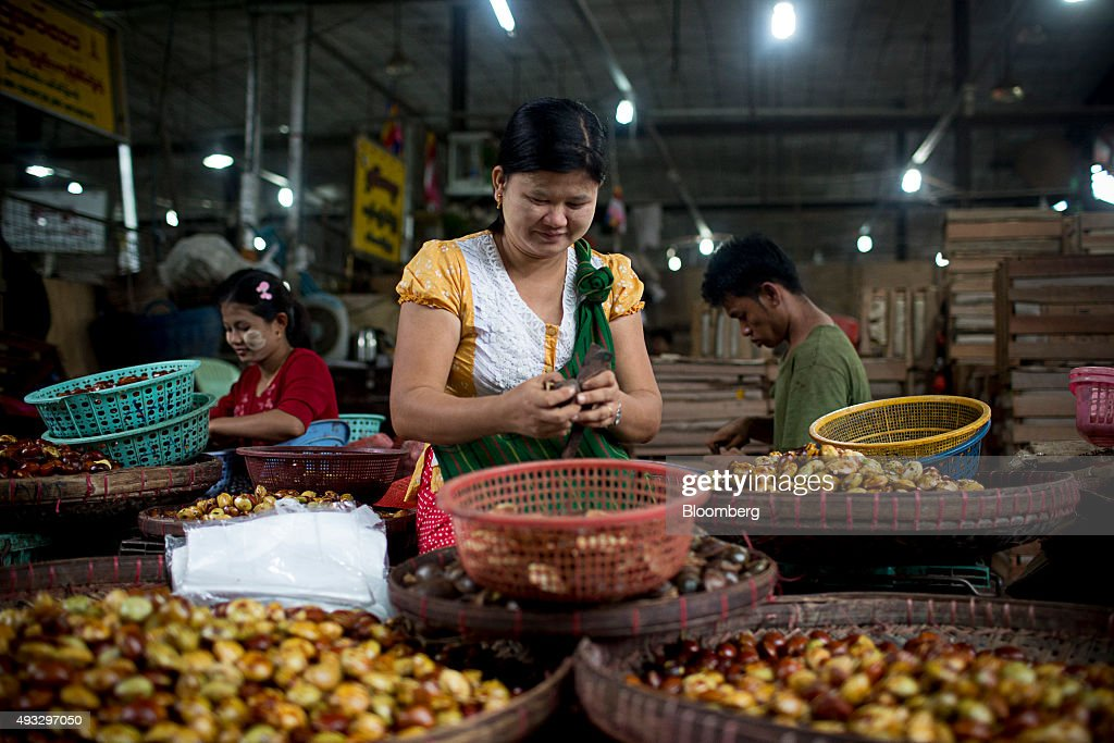 A woman sorts jengkol at Thirimingala Market in Yangon, Myanmar, on Monday, Oct. 12, 2015. Myanmar's government signed a cease-fire agreement with half of the nation's armed ethnic groups, a partial victory for President Thein Sein less than a month before an historic national election. Photographer: Brent Lewin/Bloomberg via Getty Images