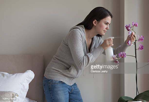 Woman spraying indoor plant