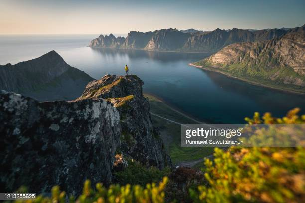 a woman stand on top of husfjellet in senja island in summer season, norway, scandinavia - cliff stock pictures, royalty-free photos & images