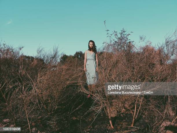 woman standing amidst dead plants on field against clear sky - hilversum foto e immagini stock
