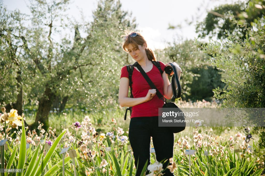 Woman Standing Amidst Flowering Plants : Stock Photo