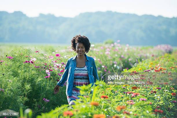 A woman standing among the flowers growing in the fields. Pink and white cosmos blooms.